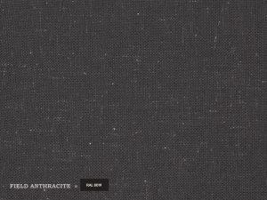 Field – Antracite
