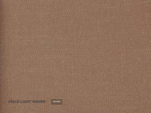 Field – Light Brown