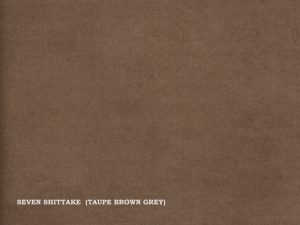 Seven – Shittake (Taupe brown grey)