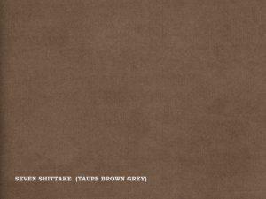 Seven – Shittake (Taupe brown grey)